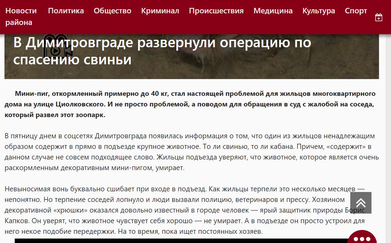статья в интернет газете