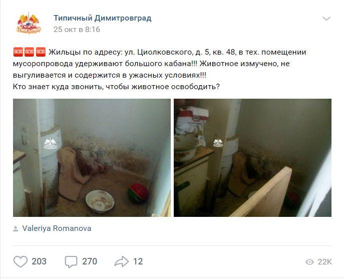 пост в группе ВКонтакте