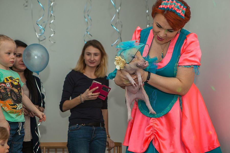 """Мини пиги и Татьяна Юрина Праздник для детей I Блог """"Всё о мини пигах"""""""